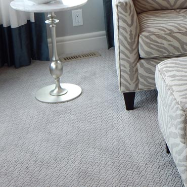 Wear-Dated Carpet Fiber | Mt Lebanon, PA