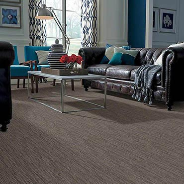 Anso® Nylon Carpet | Mt Lebanon, PA
